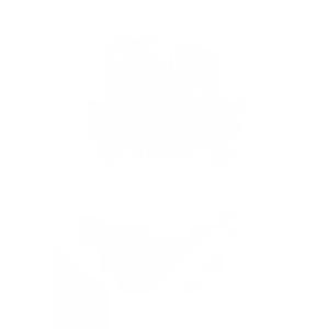 logo phenix 100x100 3 - logo-phenix-100x100