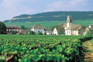 Bourgogne 300x200 - Bourgogne